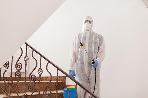 Desinfección profesional en Valencia